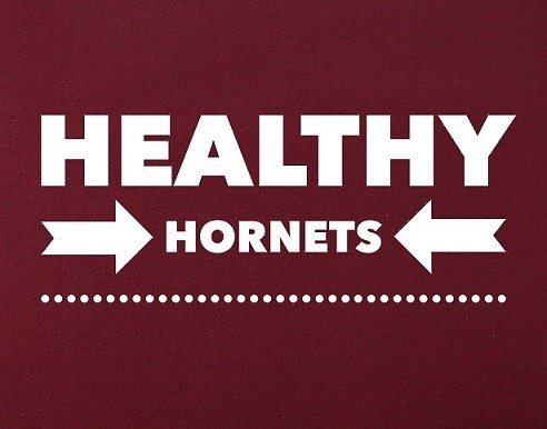 healthy hornets