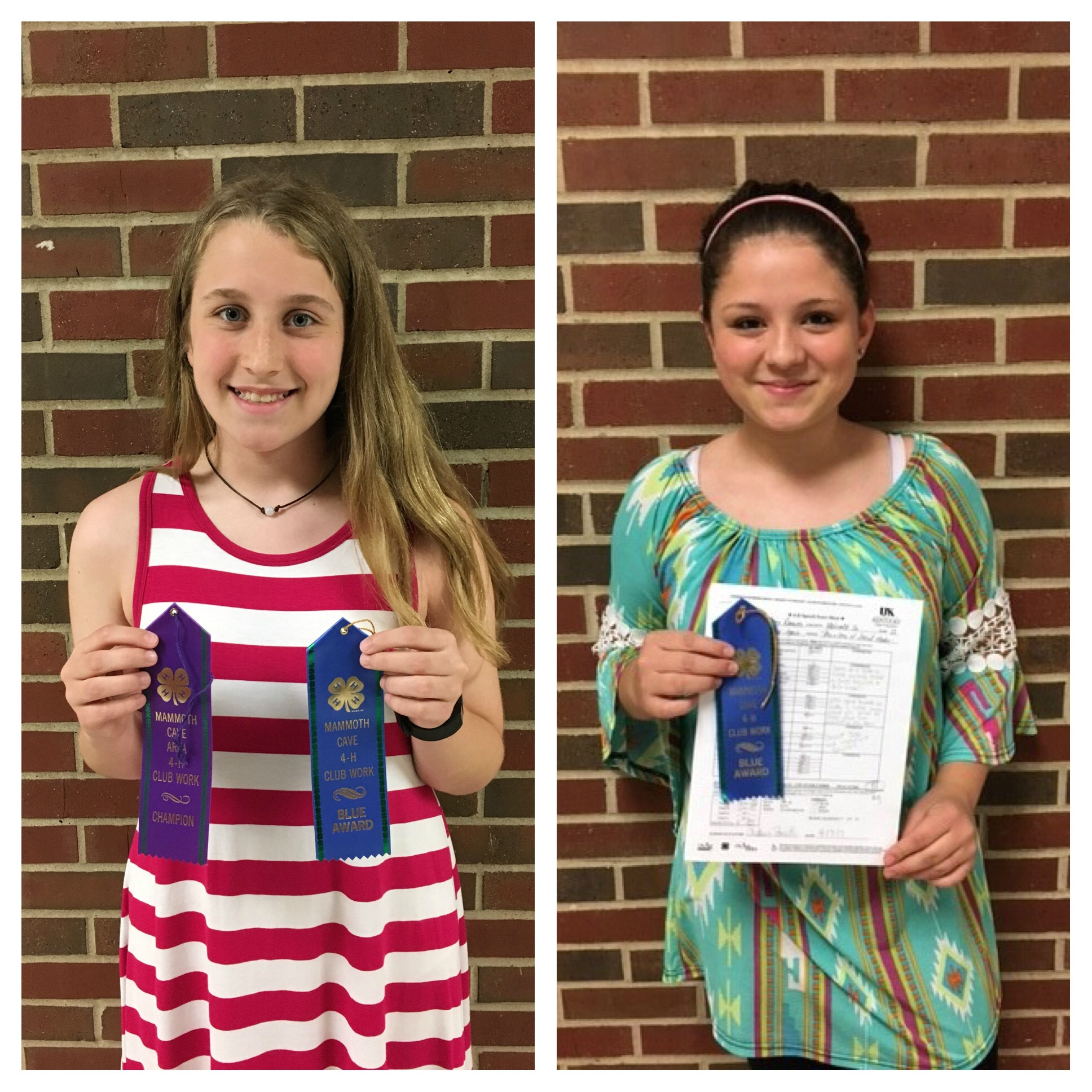 Students who placed at 4H Mammoth Cave Communications Night
